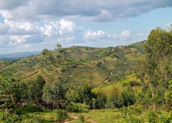 Muyinga