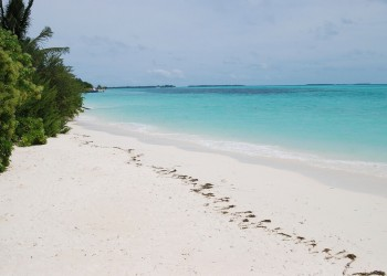 Dhidhdhoo