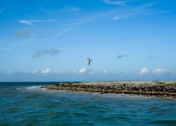 îles Kiribati