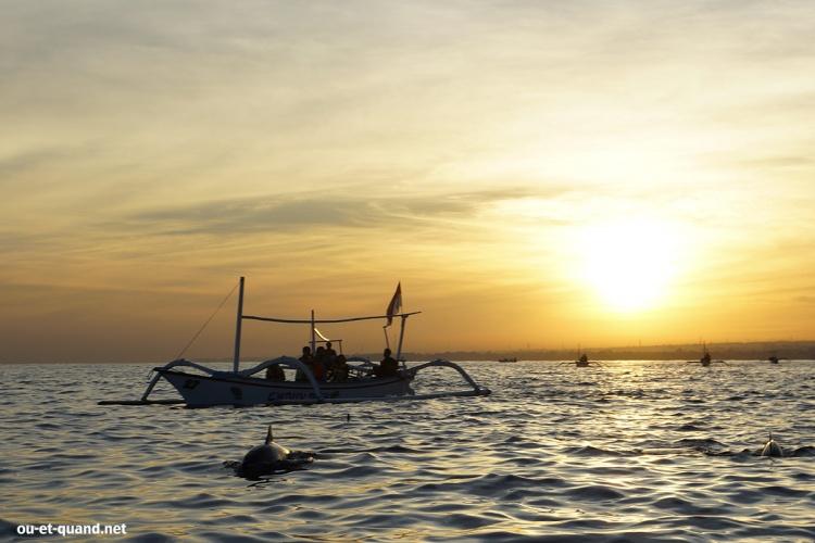 dauphins à bali :lovina-beach