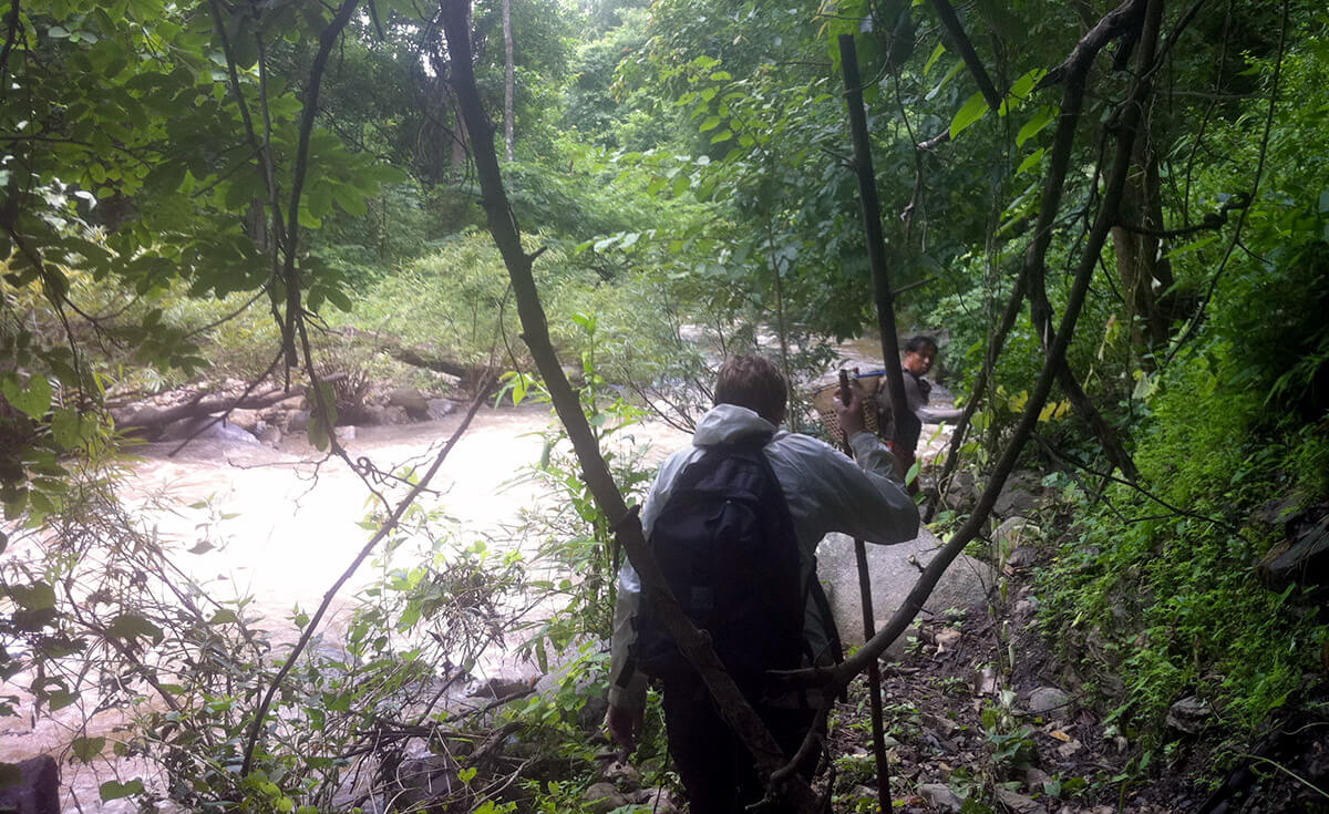Dans cet article, je vous donne une astuce pour vivre un trek authentique près de Chiang Maï !