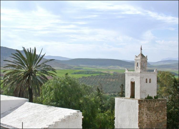 La plaine d'Oudhna (Tunisie)