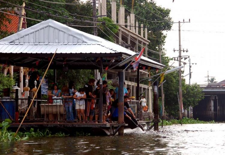 Un spectacle sympathique et drôle : l'alimentation des poissons des canaux par les habitants