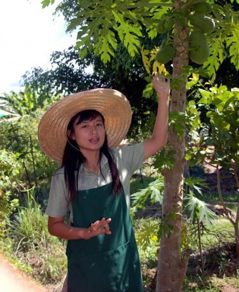 ecole-cuisine-chiang-mai-prof
