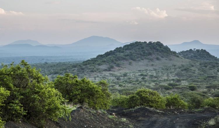 Le parc national Tsavo : un lieu unique pour observer éléphants, girafes et autres lions (crédit photo)