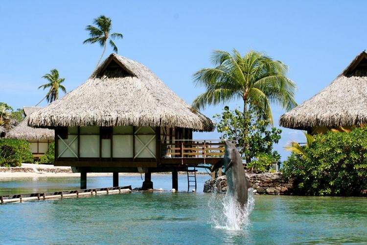 Où partir sur une île paradisiaque: bora-bora
