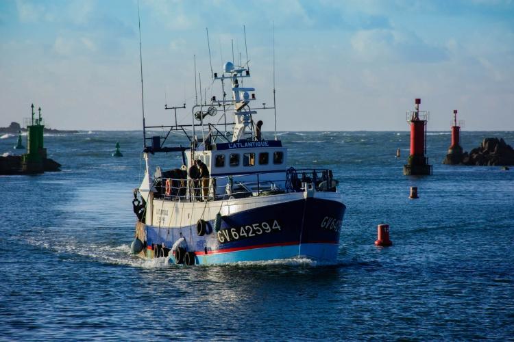 Embarquez à bord d'un chalutier pour une journée de pêche riche et excitante !
