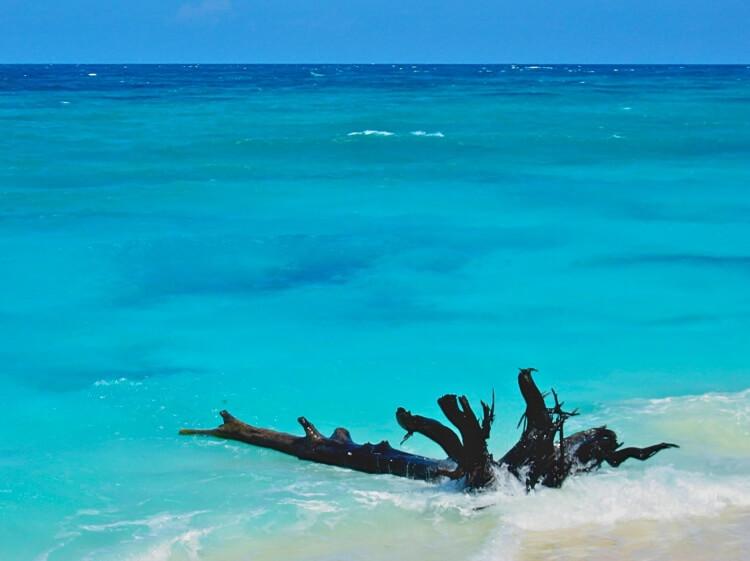 Ah ce bleu turquoise... A votre avis : Seychelles ou Maldives ? Cela pourrait être les 2... Réponse : les Seychelles.