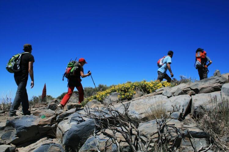 Marcheurs dans les monts des îles Canaries