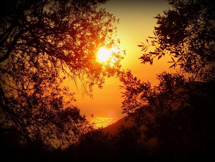Copucher de Soleil en Grèce