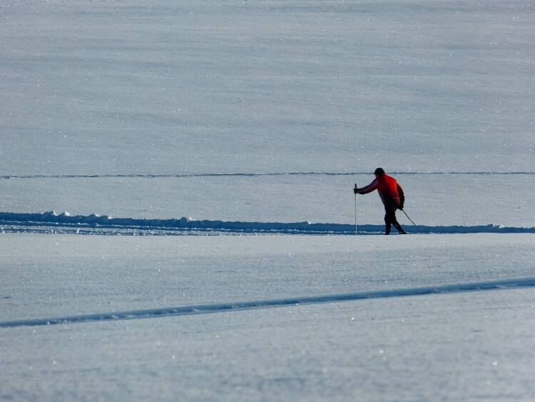 Skieur de fond