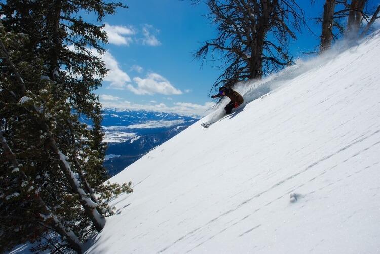 Skieur de piste
