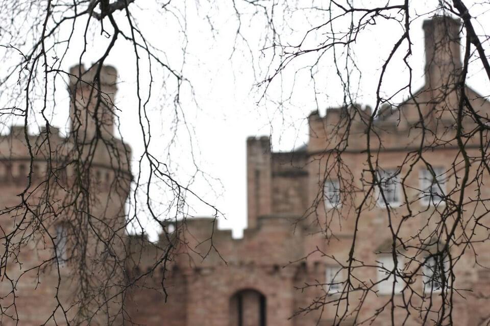 chateau caché par des branches