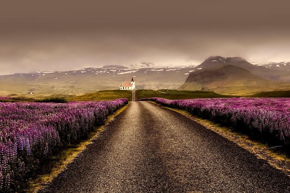 piste islande lupin itinéraire islande