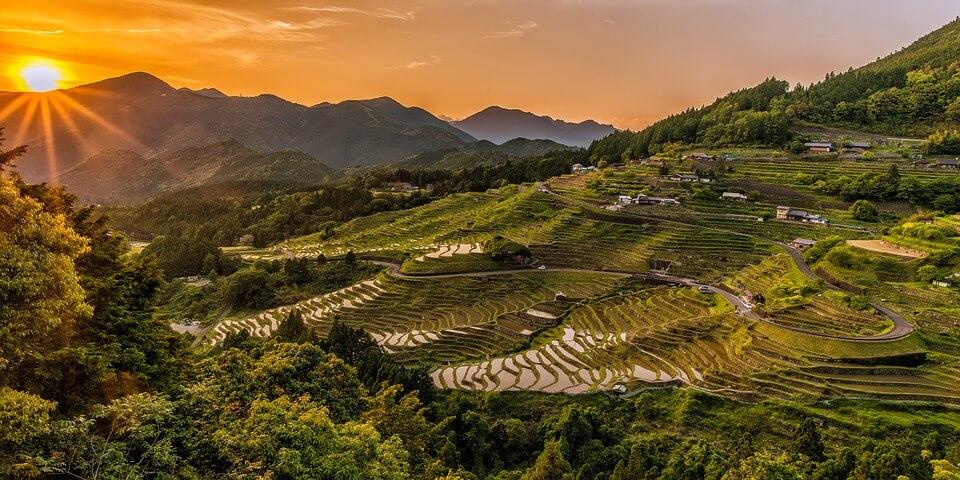 rizières au coucher de soleil saison des pluies au japon