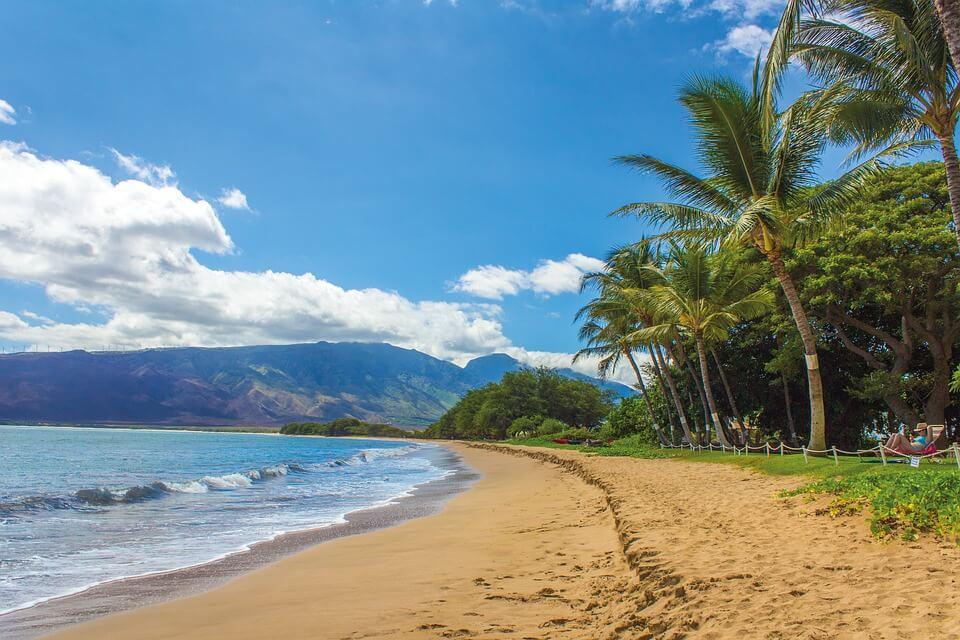 plage hawaii cocotiers îles paradisiaques du monde