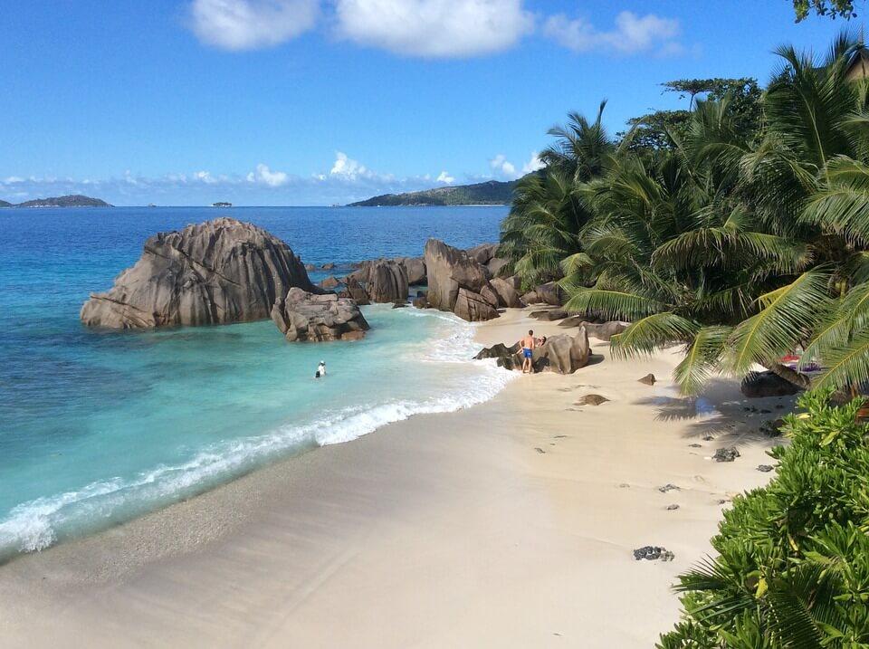 seychelles rochers eau vegetation îles paradisiaques du monde