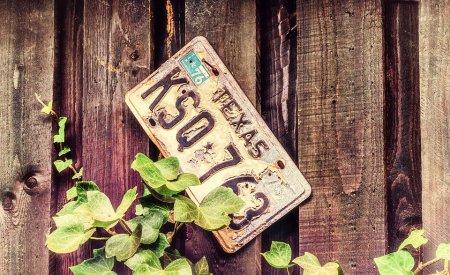 plaque immatriculation texas