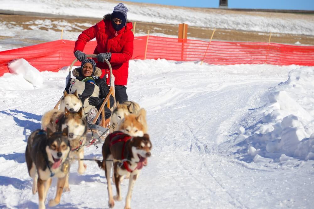carnaval de québec course de chien de traineau