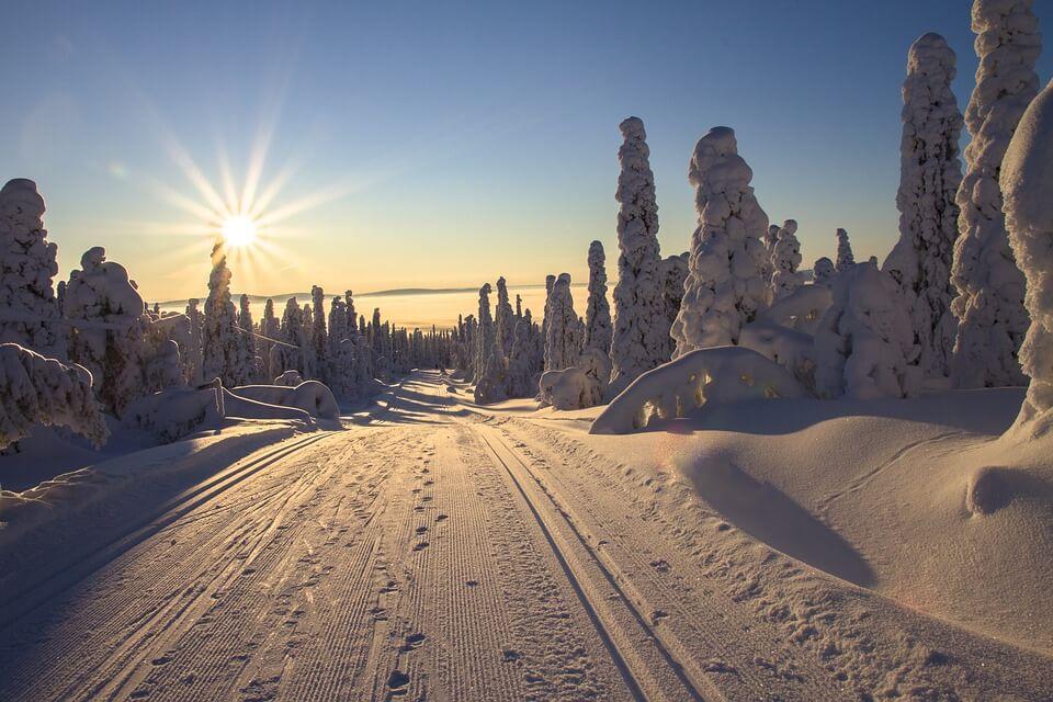 sapins enneigés route soleil laponie finlandaise où partir en hiver