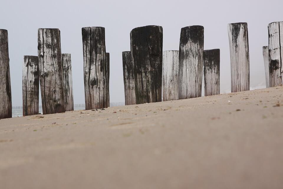 plage bois sable zelande que visiter aux pays-bas