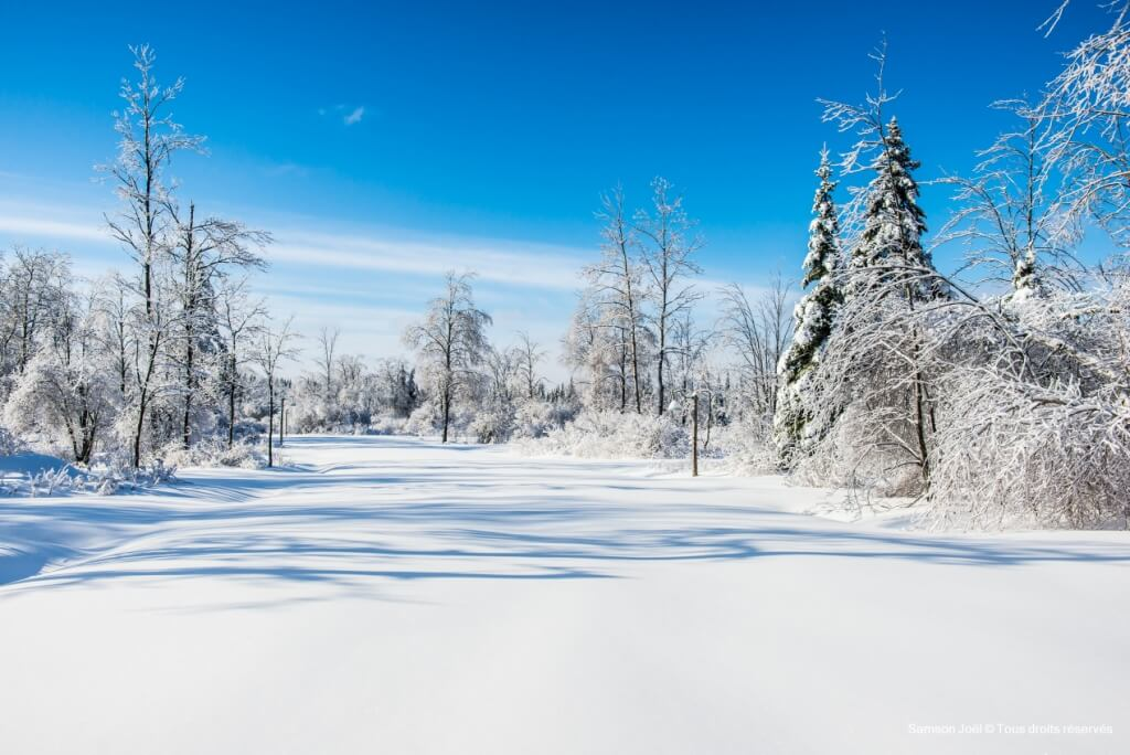 Le climat continental est défini par une très importante variation de températures entre l'hiver et l'été.