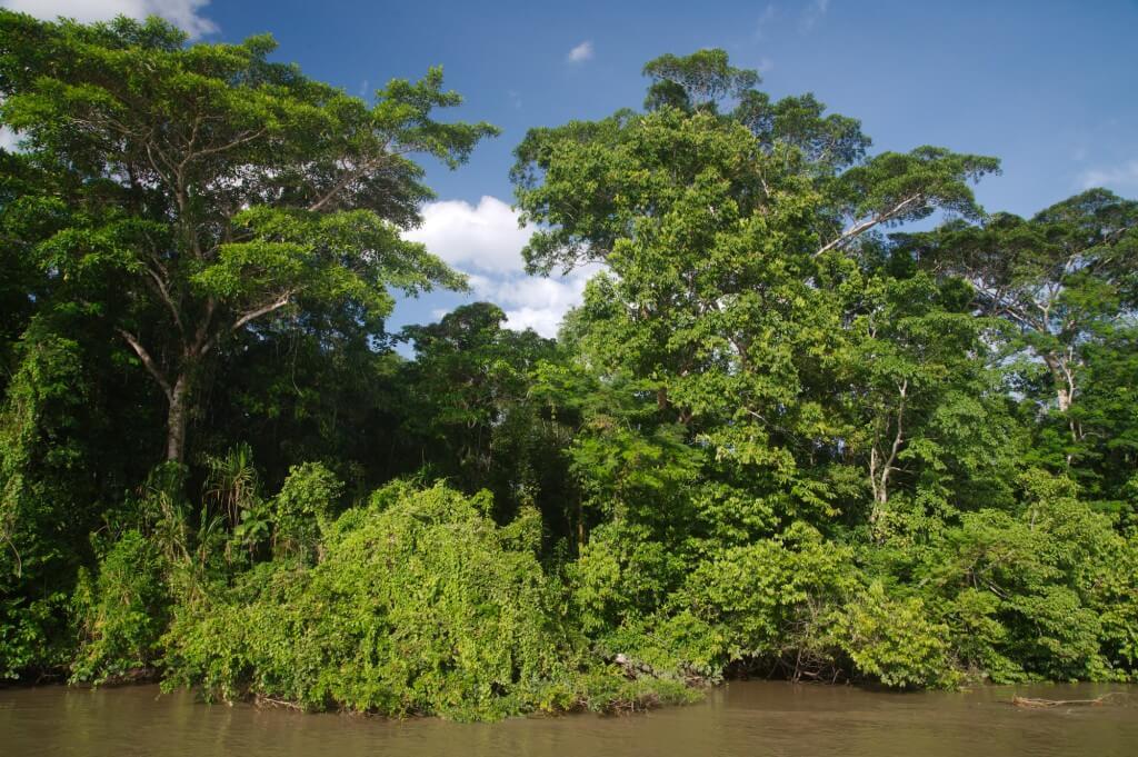 Les zones soumises au type de climat équatorial disposent en général d'un cours d'eau au débit gigantesque à l'instar de l'Amazone et du fleuve Congo.