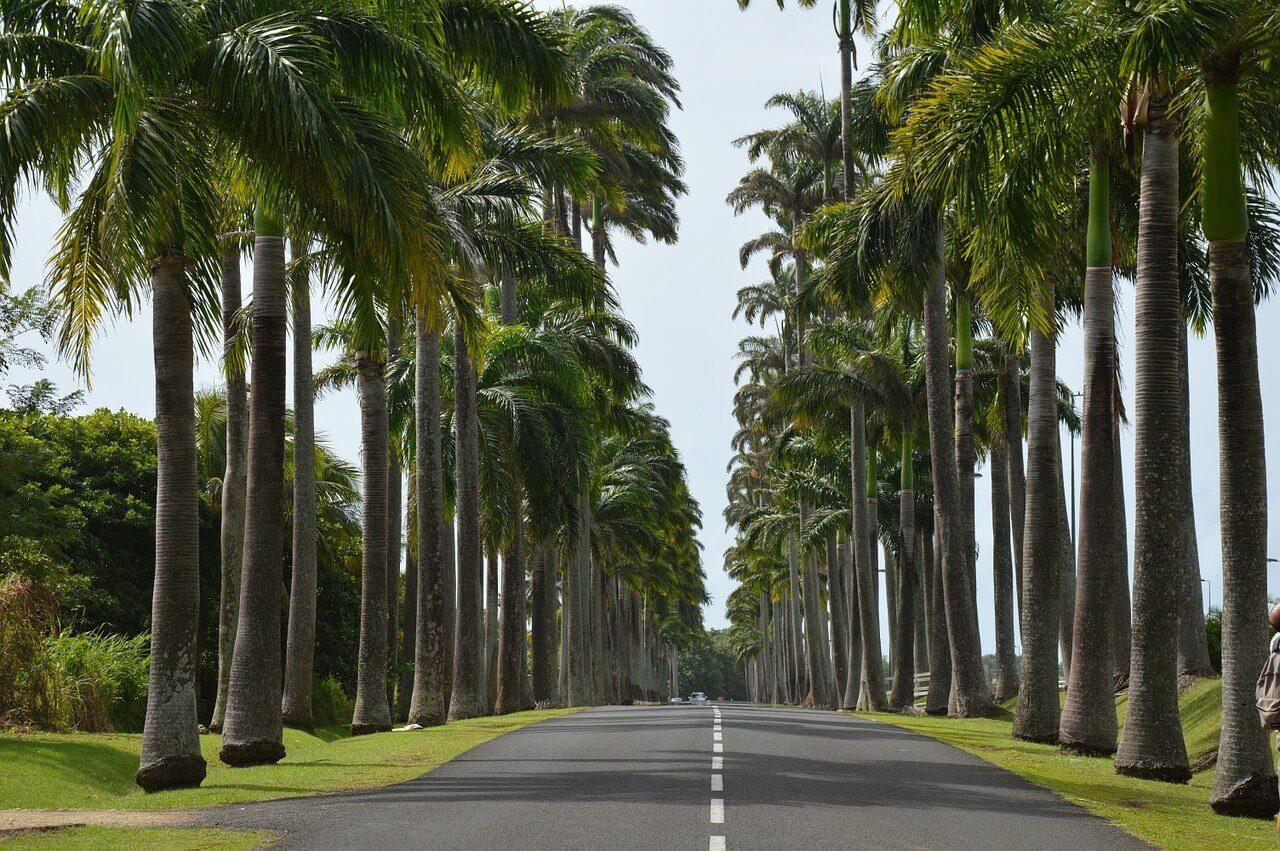 que faire en Guadeloupe quand il pleut