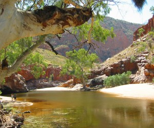 Alice Springs : Climat/Quand partir ? (à 1289 km)