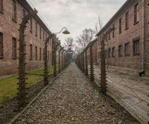 Auschwitz : Climat/Quand partir ? (à 53 km)