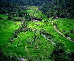 Tabanan : Climat/Quand partir ? (à 19 km)