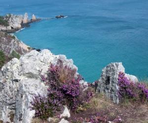 Saint-Lunaire : Climat/Quand partir ? (à 7 km)