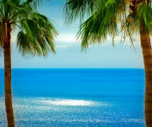 San Sebastián de La Gomera : Climat/Quand partir ? (à 12 km)