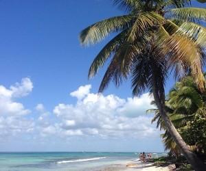 Île Saona : Climat/Quand partir ? (à 52 km)