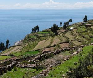 Juliaca (lac Titicaca) : Climat/Quand partir ? (à 367 km)