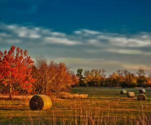 Kansas : Climat/Quand partir ? (à 709 km)