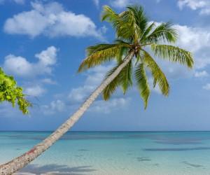 Las Terrenas : Climat/Quand partir ? (à 145 km)