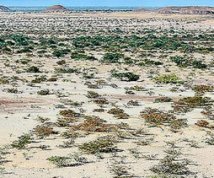 Maradi : Climat/Quand partir ? (à 252 km)