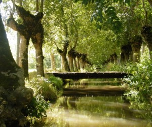 Marais poitevin (Marans) : Climat/Quand partir ? (à 21 km)