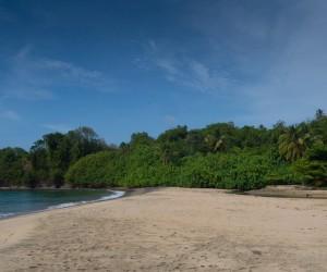 Marigot (Dominique) : Climat/Quand partir ? (à 29 km)