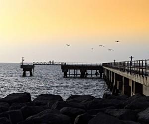 Masirah : Climat/Quand partir ? (à 367 km)