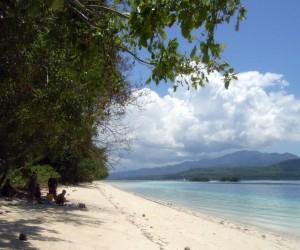 Kota Masohi : Climat/Quand partir ? (à 67 km)