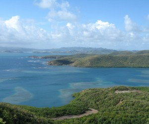 presqu'île de la Caravelle : Climat/Quand partir ? (à 18 km)