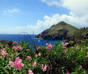 Saba : Climat/Quand partir ? (à 866 km)