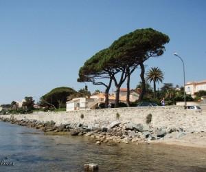 Sainte-Maxime : Climat/Quand partir ? (à 5 km)
