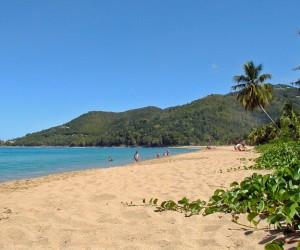 Sainte-Rose (Guadeloupe) : Climat/Quand partir ? (à 20 km)