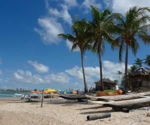 Salvador de Bahia : Climat/Quand partir ? (à 710 km)