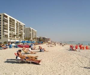 Tampa : Climat/Quand partir ? (à 244 km)