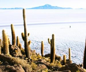 Uyuni : Climat/Quand partir ? (à 229 km)