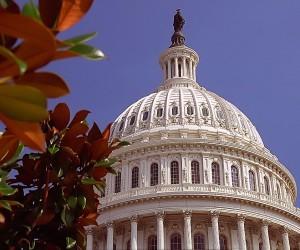 Washington D.C. : Climat/Quand partir ? (à 603 km)